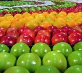 0810fruits